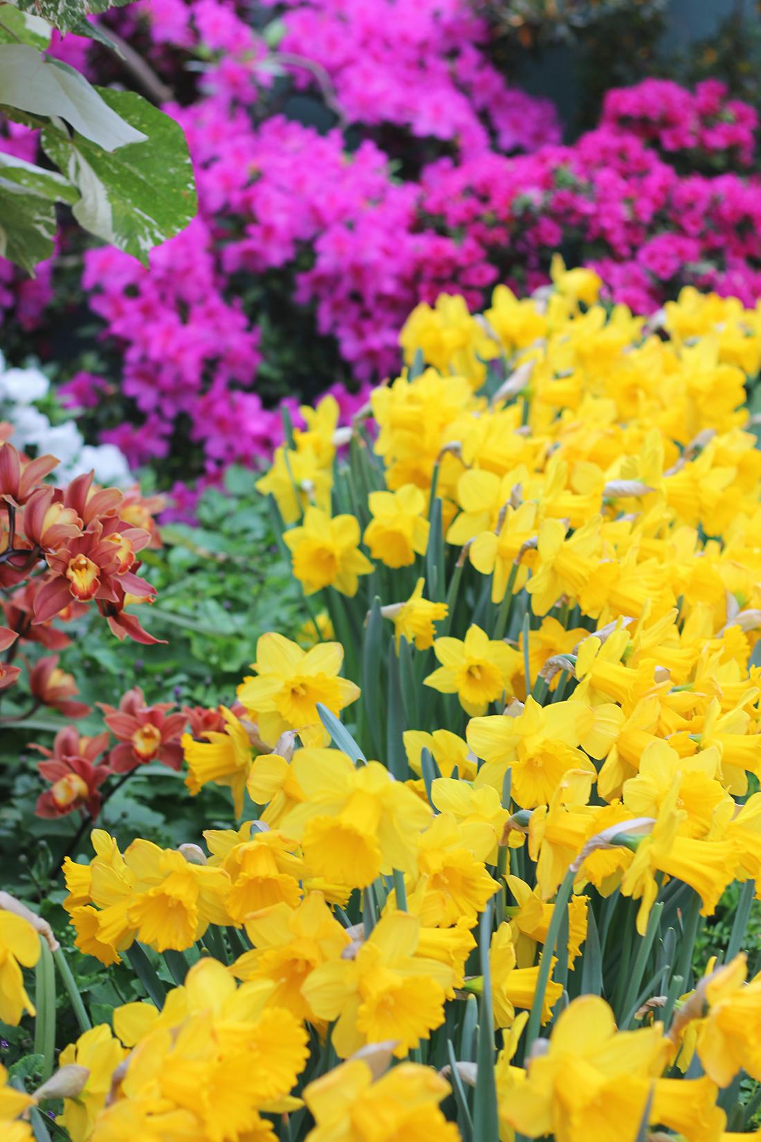 floral-silk-blouse-garfield-observatory-17