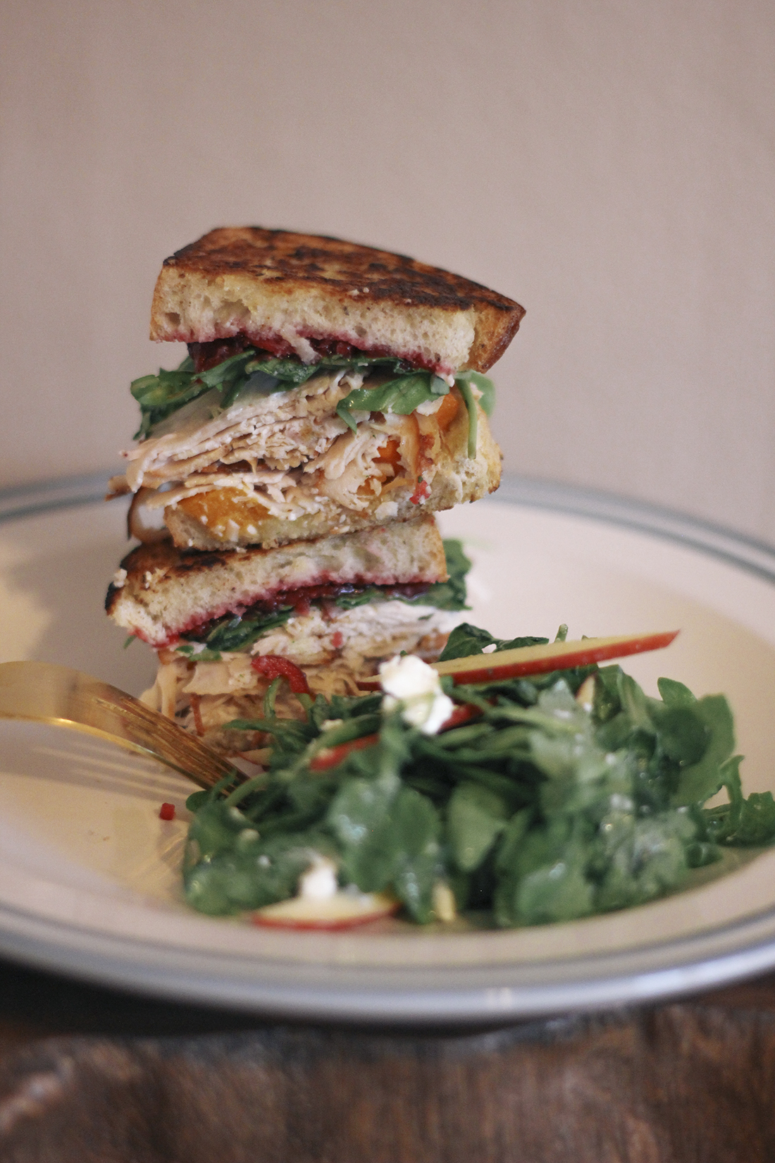 butternut-squash-turkey-sandwich-cranberry-sauce-5