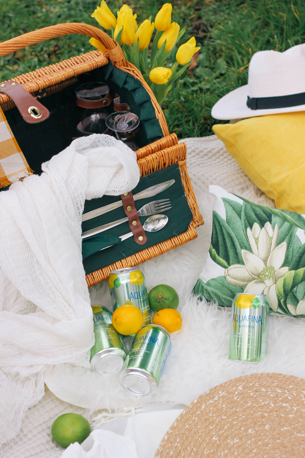 Upgrade your next spring picnic with new Aquafina Sparkling from Target.
