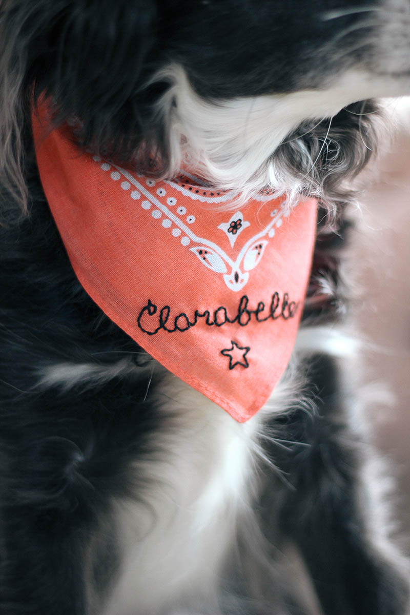 Don't forget about your pup this holiday season! Place this pretty #DIY embroidered bandana under the tree for her. Get the full tutorial at HomemadeBanana.com