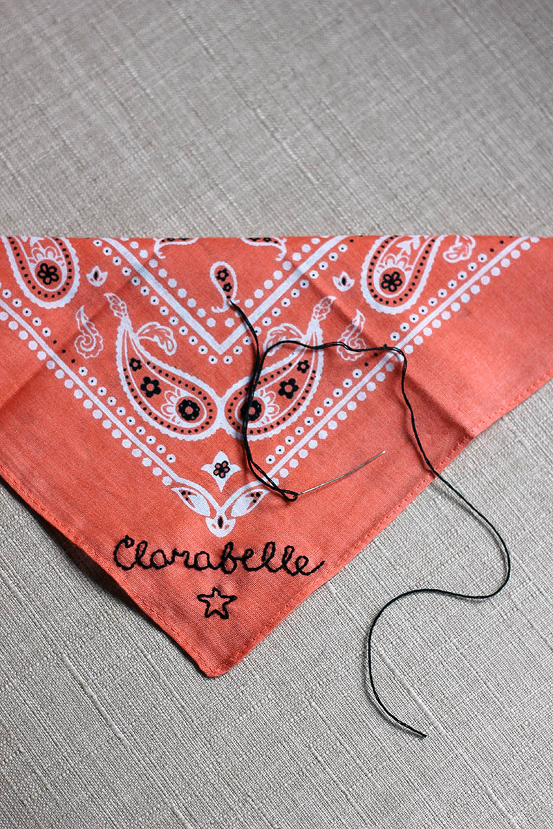 diy embroidered dog bandana
